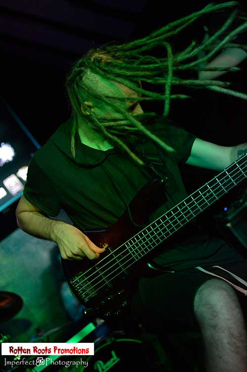 Dmitry Lisenko Bass
